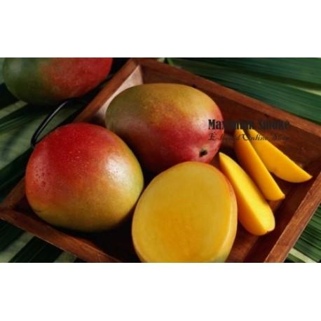 Maximum Flavour Mango aroma, eliquid aroma
