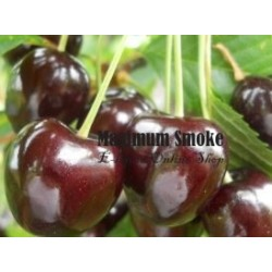 Maximum Flavour Black Cherry aroma 10ml