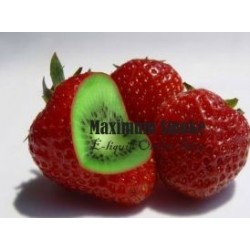 Maximum Flavour Strawberry Kiwi aroma, eliquid aroma