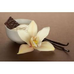 TPA French Vanilla aroma, eliquid aroma