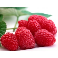 TPA Raspberry aroma, eliquid aroma