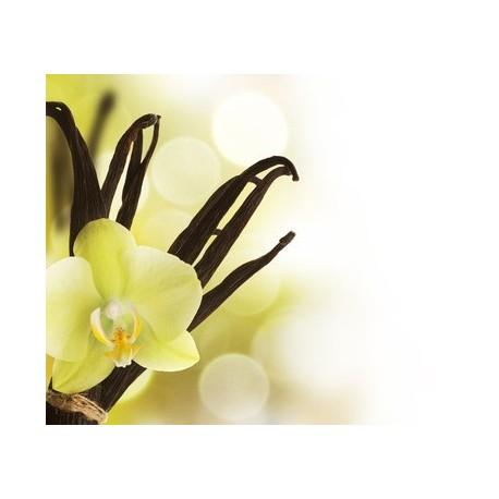 Capella Simply Vanilla aroma, eliquid aroma